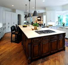 kitchen island with stove ideas. Spectacular Island Stove Ideas Beverage Serving Delightful Kitchen With Dishwashers. R