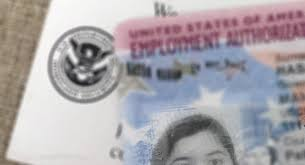 Maybe you would like to learn more about one of these? Trump S Student Visa Delays Turned My American Dream Into A Paralyzing Nightmare Gothamist