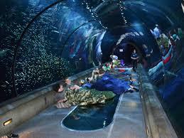 Cool Aquariums Best Us Aquariums Travelchannelcom Coastal Living Magazine