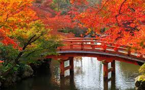 Kyoto Fall Wallpapers - Top Free Kyoto ...