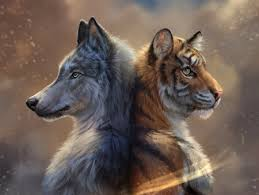 Wolf vs tiger the wolf rule. Wolf And Tiger Fantasy Abstract Background Wallpapers On Desktop Nexus Image 2529265