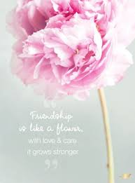Flowers Quotes Impressive Friendship Is Like A Flower With Love Care It Quotes I Love