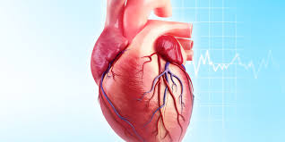 coronary heart disease essay epidemiological studies of chd and the evolution of preventive the global distribution of ischaemic heart disease