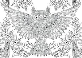 owl coloring pages for adults. Wonderful Owl Printable Owl Coloring Pages Detailed For Adults  Very Hard Of Owls  In A