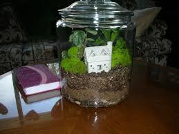 the terrarium inside a cookie joar