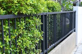 boundary wall designs and ideas for