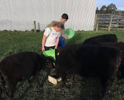 Juniors to shine at Rangiora | Otago Daily Times Online News