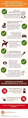 Dog Friendly Over The Counter Medications Chart Which Over The Counter Medications Are Safe For Dogs