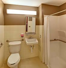 Ada Bathroom Design Ideas Unique Decoration