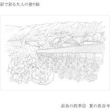 あかしや 彩で彩る大人の塗り絵 奈良の四季 4枚セット Ao 50nb 5セット直送品