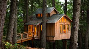 Best 25 Simple Tree House Ideas On Pinterest  Tree Forts Diy How To Build A Treehouse For Adults