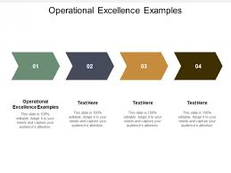 Operational Excellence Example Operational Excellence Examples Ppt Powerpoint Presentation