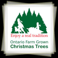 logo. The Environmental Choice - Real Christmas Trees