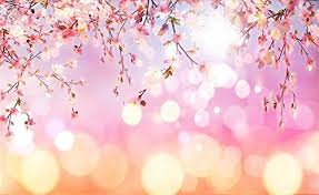 Cherry Blossom Backdrop Leowefowa Vinyl 5x3ft Cherry Blossom Backdrop Fresh Pink Flowers Spring Bokeh Sparkle Sequins Romantic Wallpaper Photography Background Kids Girls
