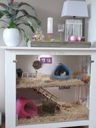 diy hamster cage beautiful guinea pigs the perfect pet of diy hamster cage inspirational the shelf