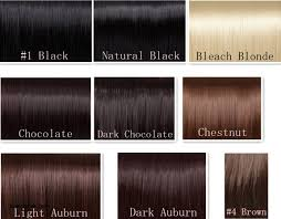 Chestnut Hair Colour Chart