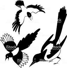 The Black Silhouette Of A Crow Raven Rook Magpie Tattoo Stock Vector