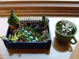 indoor fairy garden and teacup garden