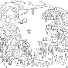 Tiger Coloring Pages Colouring Adult Detailed Advanced Printable