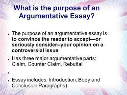 essay counter twenty hueandi co essay counter