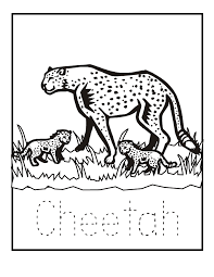 Cheetah Coloring Page Animals Town Free Cheetah Color Sheet