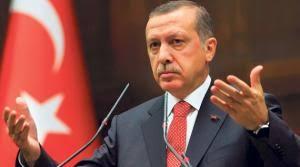 تركيا - أردوغان : لن اتوقف عن وصف دول أوروبية بالفاشية والنازية
