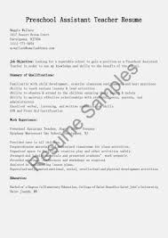 Sample Resume For An Assistant Director Of A Childcare Center Unique