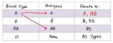 Explicit Blood Type Antigen Chart Blood Type Antigens