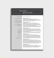Chronological Resume Examples 2020 Cosmetologist Resume Example 2019 2020 Resume Templates