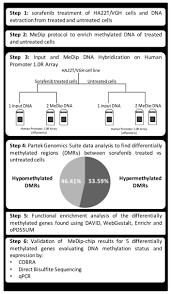 Sorafenib Induces Variations Of The Dna Methylome In Ha22t