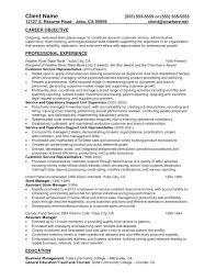 merchandiser resume objective resume merchandising resume sample resume for  application fashion merchandiser resume sample
