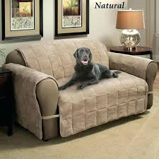 couch pet protector leather couch protector chair covers slipcovers for pet couch protector australia