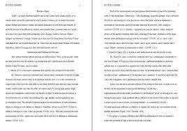 essay apa format sample apa essay format sample essay format example sample apa format essay