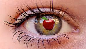 apple of my eye. this illustration represents the idiom \u201cyou\u0027re apple of my eye.\u201d purpose project was to make an with just pictures. eye