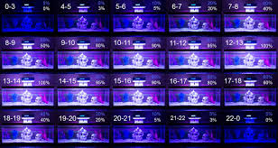 35w programmable led aquarium light with remote 24 hour time table with blue u0026 white