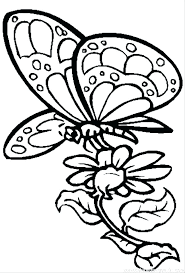 Free Coloring Pages Flowers And Butterflies Newest Free Coloring