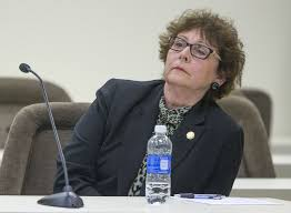 Challengers for Trudy Wade's Senate seat emerge | Local News |  greensboro.com