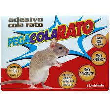 Para proceder à escolha o coordenador usa as cores da roupa dos participantes como f\ Ratoeira Cola Rato No Shoptime