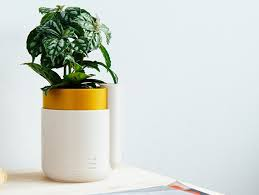 comments for self watering planter