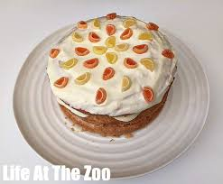 Layered Lemon Drizzle Cake Recipe Life At The Zoo