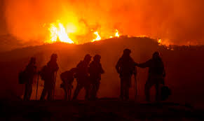 A Discussion With Experts On California Wildfire Links To Climate