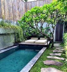 Small Picture Homelife Everything You Need To Know About Tropical Garden Design