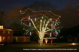 tree wrapped in lights