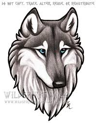 gray wolf drawing colored. Delighful Colored Blue Eyed Grey Wolf Bust Commission By WildSpiritWolf  For Gray Drawing Colored R