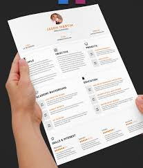 Professional Resume Templates Design Tips Classy Professional Resume Design