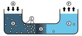 countertop reverse osmosis water filter reviews reverse osmosis water filter aquatru countertop reverse osmosis water purifier