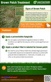 Brown Patch Disease Brown Patch Treatment Guide How To Get Rid Of Brown Patch Fungus