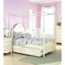 Canopy For Twin Beds Girls Twin Bed Canopy Magnificent Canopy ...