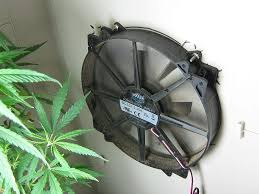 100 grow cabinet ventilation