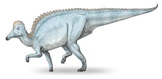 Amurosaurus riabinini